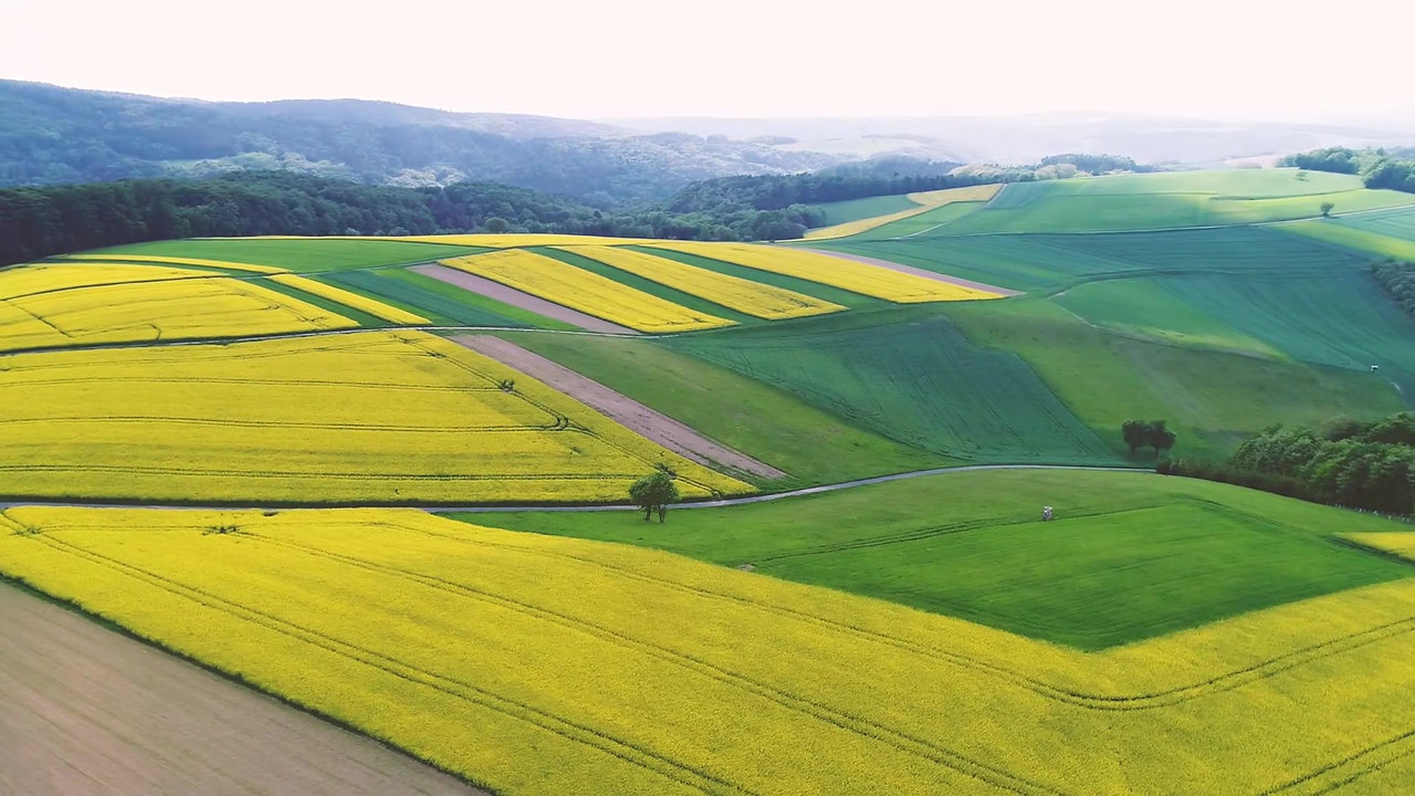 Impressionen aus dem Burgenland