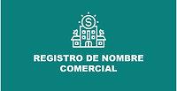Cap. 2 - Registro de Nombre Comercial y Creación de Perfiles