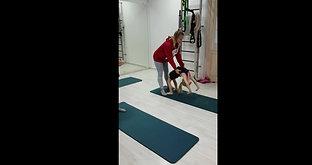 Акробатика - Промо