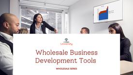 Wholesale Business Development Tools