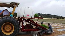 Farmlife Planting 2020