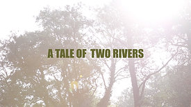 A tale of two rivers - fishing in East Anglia