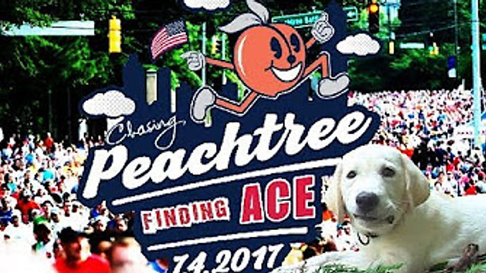 Chasing Peachtree, Finding History series