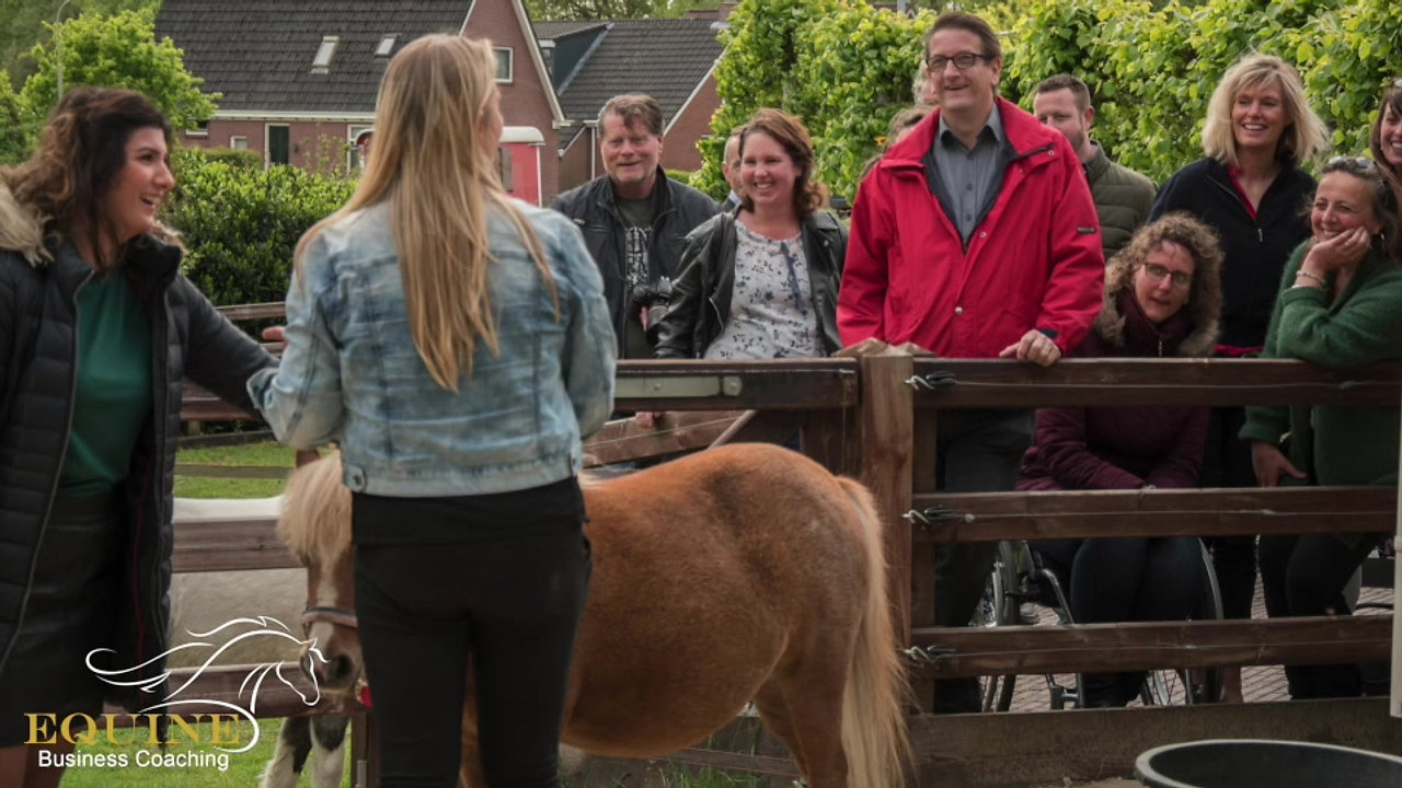Teambuildingdag - Equine Business Coaching