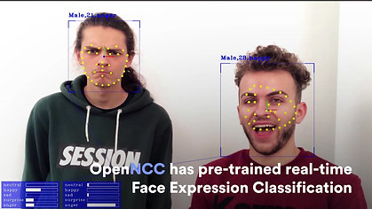 Face Expression Classification