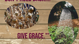 """Don't Hold Back.. Give Grace."""