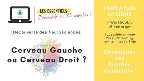 [Découverte des Neurosciences] Cerveau Gauche ou Cerveau Droit ? Développez vos facultés cognitives !