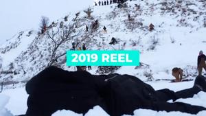 Studio Good Dog 2019 Reel