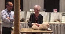 Garnicats Alastor Moody