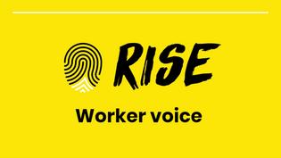 Part 4: Worker Voice