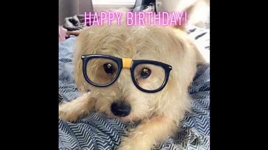 Lucas Happy birthday Video 2020