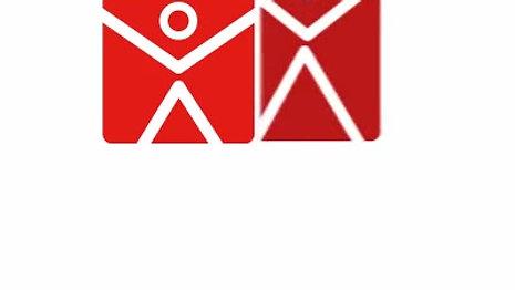 Logo2 - Top Executive