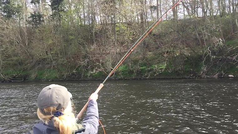 Ladyfisher Videos