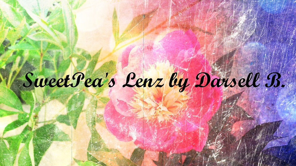 SweetPea's Lenz Fine Art Photography Welcome Video