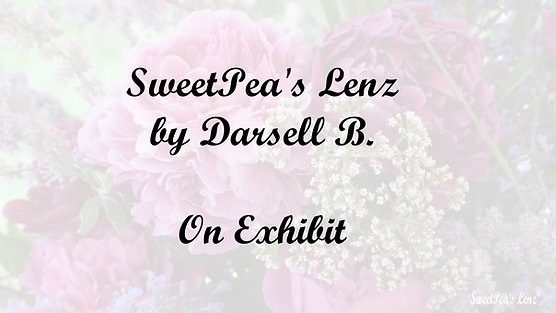 SweetPea's Lenz by DarsellB - On Exhibit