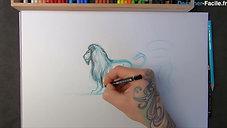 Lion entier de profil