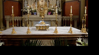 Divine Mercy Holy Hour  3pm