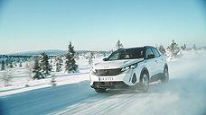 Peugeot - Vinter 2021