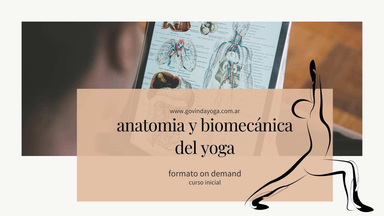 Anatomía y Biomecánica del Yoga