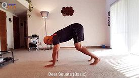 Bear Squats Basic