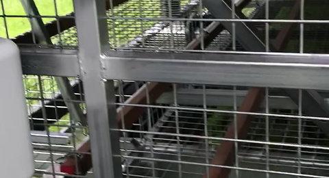 AF600 Aussie Chicken Nesting Trailer