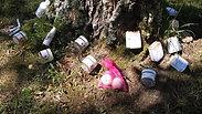 Les potions d'Au autour de l'arbre