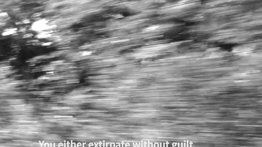 Rambling Journey (Poesía movimieto) - Ethel Barja