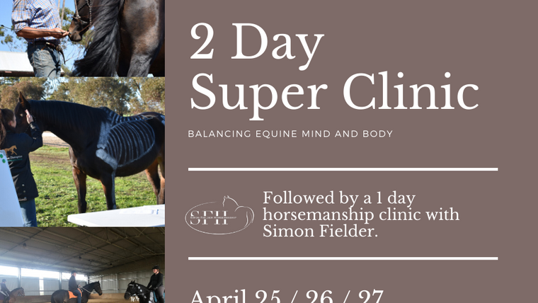 Balancing Equine Mind and Body - Horsemanship Series