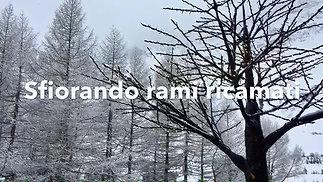 Mi_hanno_promesso_un_inverno_stellare