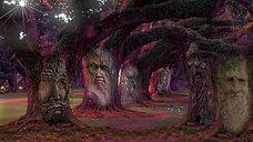 7 Превращения деревьев