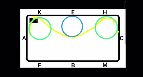 TROT - Loop with 10m circles