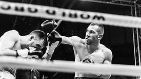 """Un jour avec Bruce Codron, boxeur - """"Soirée de gala"""""""