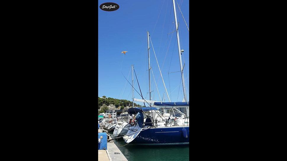 StopGull Falcon at Sailboat