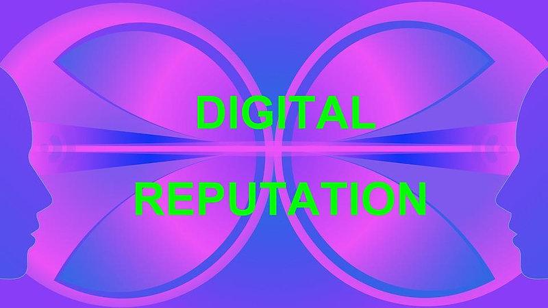 DIG Reputation- Middle School Edition