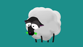Sheep idle