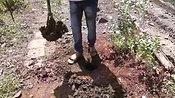 Efficient Digging Tool: Hard Soil