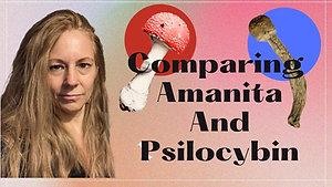 Comparing Amanita And Psilocybin