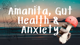 Amanita & The Gut, Anxiety and Inflammation