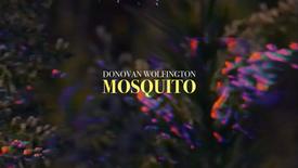 DONOVAN WOLFINGTON - MOSQUITO