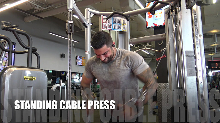 Alt Cable Flies to Standing Cable Press