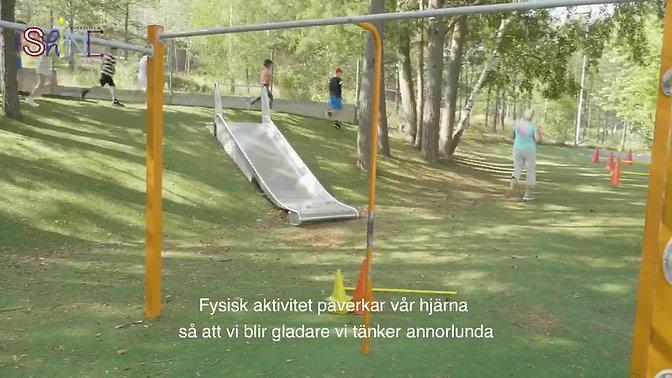 Fredagsfys Sverige!