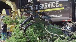 C.T. Tree Service