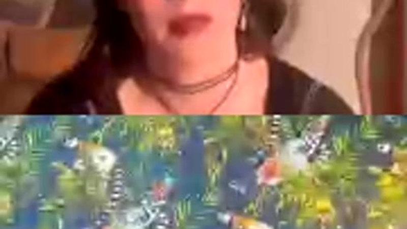 Georgia Van Etten - Live