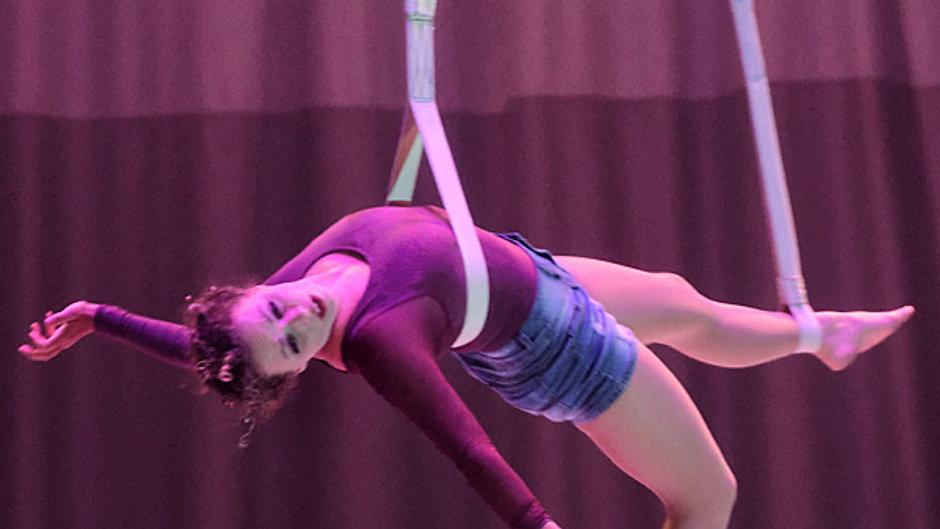 Circus Videos
