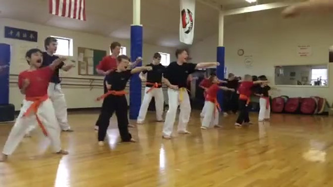 Karate Style
