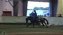 Sage Sapergia riding Hangten Holly in the 5 and 6 Year Old Derby 17SPC