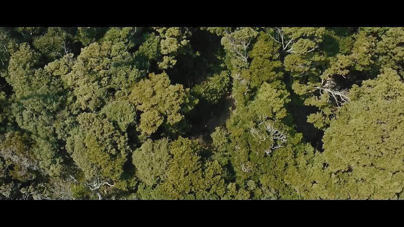 Drone shooting pv