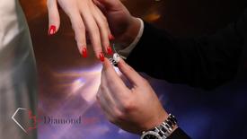 Diamond net INC