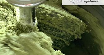 Chocolate Verde, AZÚCAR