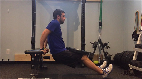 Dips - Bench Weighted